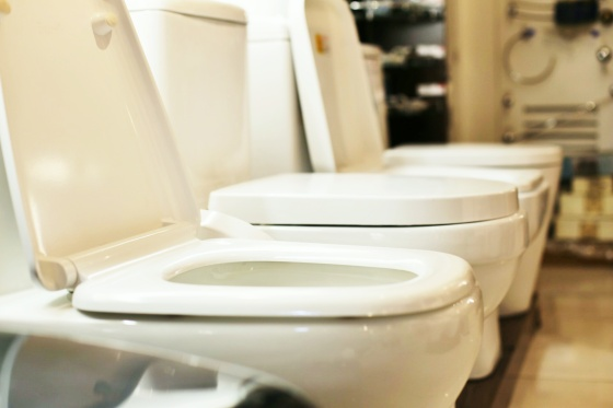 Toilet bowl shopping is like speed dating: You don't have all day, because you need to like each other - fast.